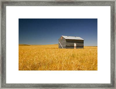 Barn At Choteau Montana Painted Framed Print by Rich Franco