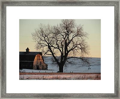 Barn At Sunrise Framed Print
