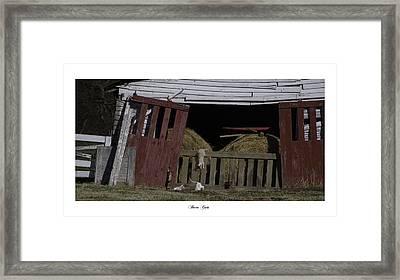 Barn Cats Framed Print