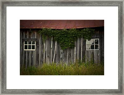 Barn Eyes Framed Print