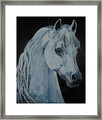 Barn Ghost Framed Print by Sandra Wilson