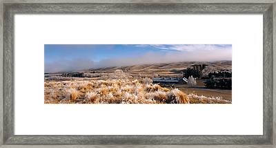 Barn In A Field, Morven Hills Station Framed Print by Panoramic Images