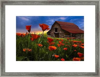 Barn In Poppies Framed Print by Debra and Dave Vanderlaan