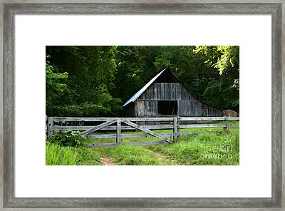 Barn In The Trees Framed Print by E B Schmidt