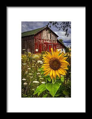 Midwest Framed Prints