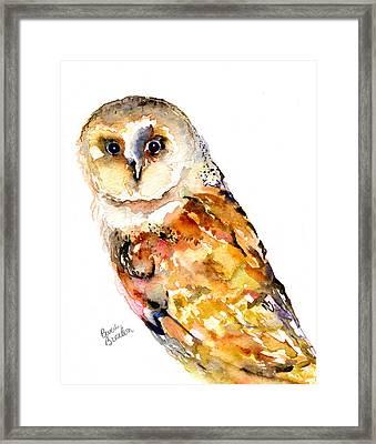 Barn Owl Framed Print by Beverly Bronson