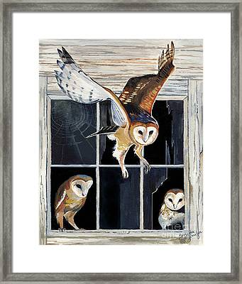Barn Owl Family Framed Print