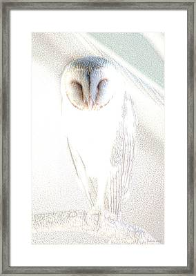 Framed Print featuring the photograph Barn Owl by Holly Kempe