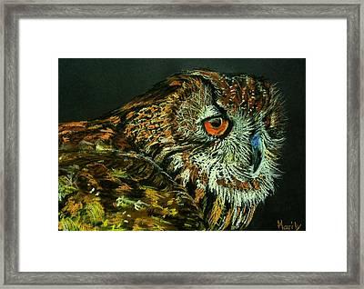Barn Owl Framed Print by Marily Valkijainen