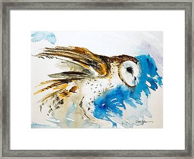 Da145 Barn Owl Ruffled Daniel Adams Framed Print
