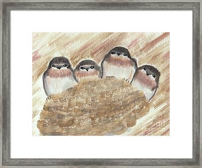 Barn Swallow Chicks Framed Print by Conni Schaftenaar