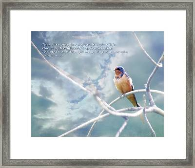 Barn Swallow On Blue Sky With Einstein Quote Framed Print