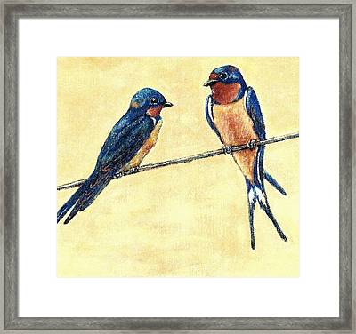 Barn-swallow Pair Framed Print