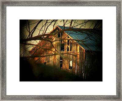 Barn Thru The Trees Framed Print by Joyce Kimble Smith