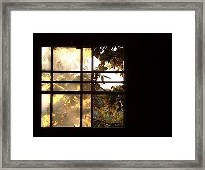 Barn Window Framed Print by Daniel Kasztelan