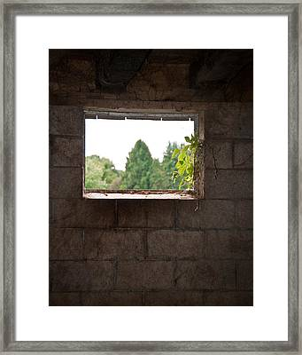 Barn With A View Framed Print by Nickaleen Neff