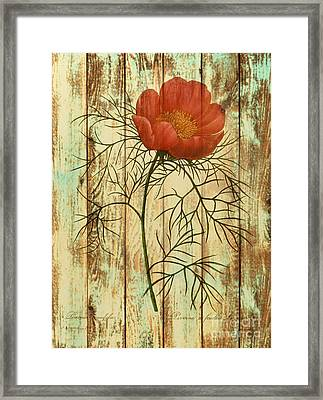 Barn Wood Texture Poppy Flower Botanical Art Framed Print by Cranberry Sky