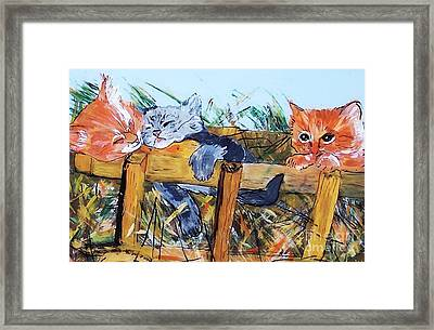 Framed Print featuring the painting Barncats by Lucia Grilletto
