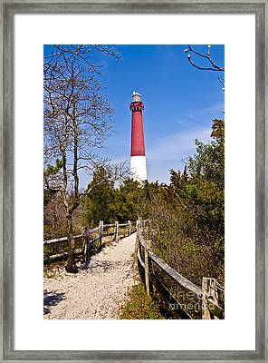 Barnegat Lighthouse II Framed Print by Anthony Sacco