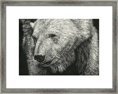 Barnicles Framed Print