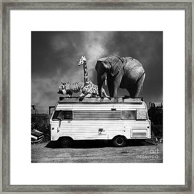 Barnum And Bailey Goes On A Road Trip 5d22705 Square Black And White Framed Print by Wingsdomain Art and Photography
