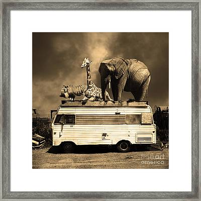 Barnum And Bailey Goes On A Road Trip 5d22705 Square Sepia Framed Print by Wingsdomain Art and Photography