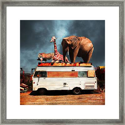Barnum And Bailey Goes On A Road Trip 5d22705 Square Framed Print by Wingsdomain Art and Photography