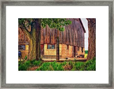 Barnyard 2 - Paint Framed Print