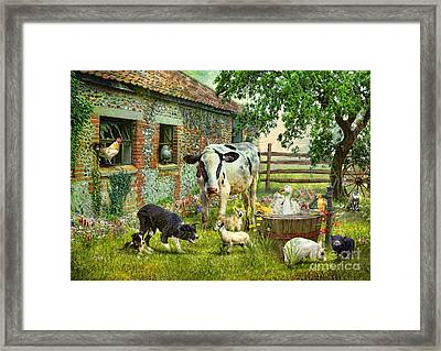 Barnyard Chatter Framed Print by Trudi Simmonds