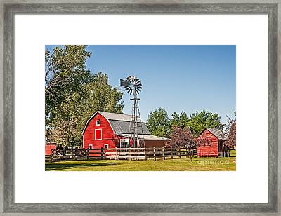 Barnyard Framed Print by Sue Smith