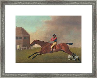Baronet With Sam Chifney Up Framed Print