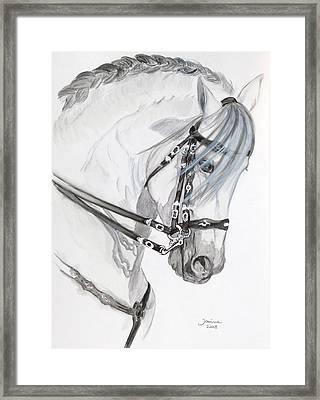 Baroque Horse Framed Print