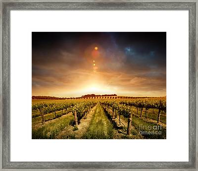 Framed Print featuring the photograph Barossa Vineyard by Boon Mee