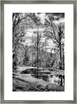 Framed Print featuring the photograph Barr Hammock Preserve  by Howard Salmon
