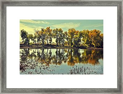 Barr Lake Reflection Framed Print by Reza Mahlouji