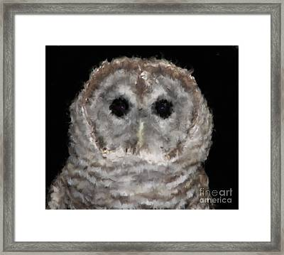 Barred Owl With Oil Painting Effect Framed Print