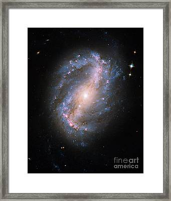Barred Spiral Galaxy Ngc 6217 Framed Print by Science Source