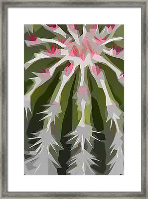 Barrel Cactus Collage Framed Print by Carol Leigh