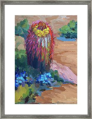 Barrel Cactus In Bloom Framed Print