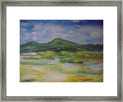 Barren But Beautiful Framed Print by Conor Murphy