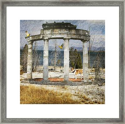 Barren Shoreline Framed Print by Liane Wright
