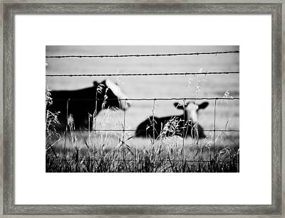 Barriers Framed Print