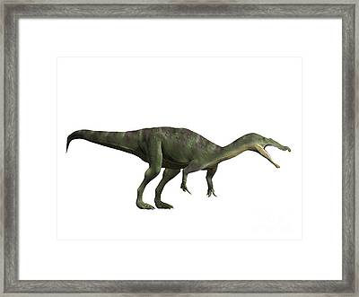 Baryonyx Walkeri, Early Cretaceous Framed Print by Nobumichi Tamara