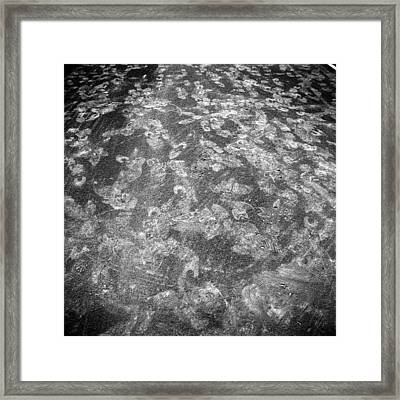 Baseball Field 21 Framed Print by YoPedro