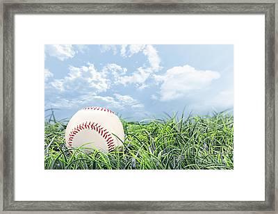 Baseball In Grass Framed Print by Stephanie Frey