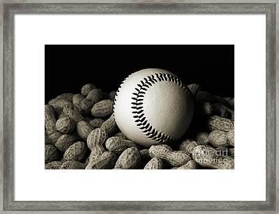 Baseball Season Bw Framed Print