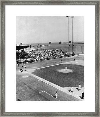 Baseball Spring Training Framed Print