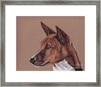 Basenji Framed Print by Charlotte Yealey