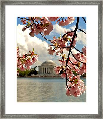 Basin Blossoms Framed Print