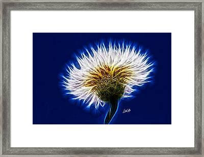 Basket Flower Inner Beauty Framed Print by Nikki Marie Smith